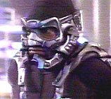 mantis02.jpg